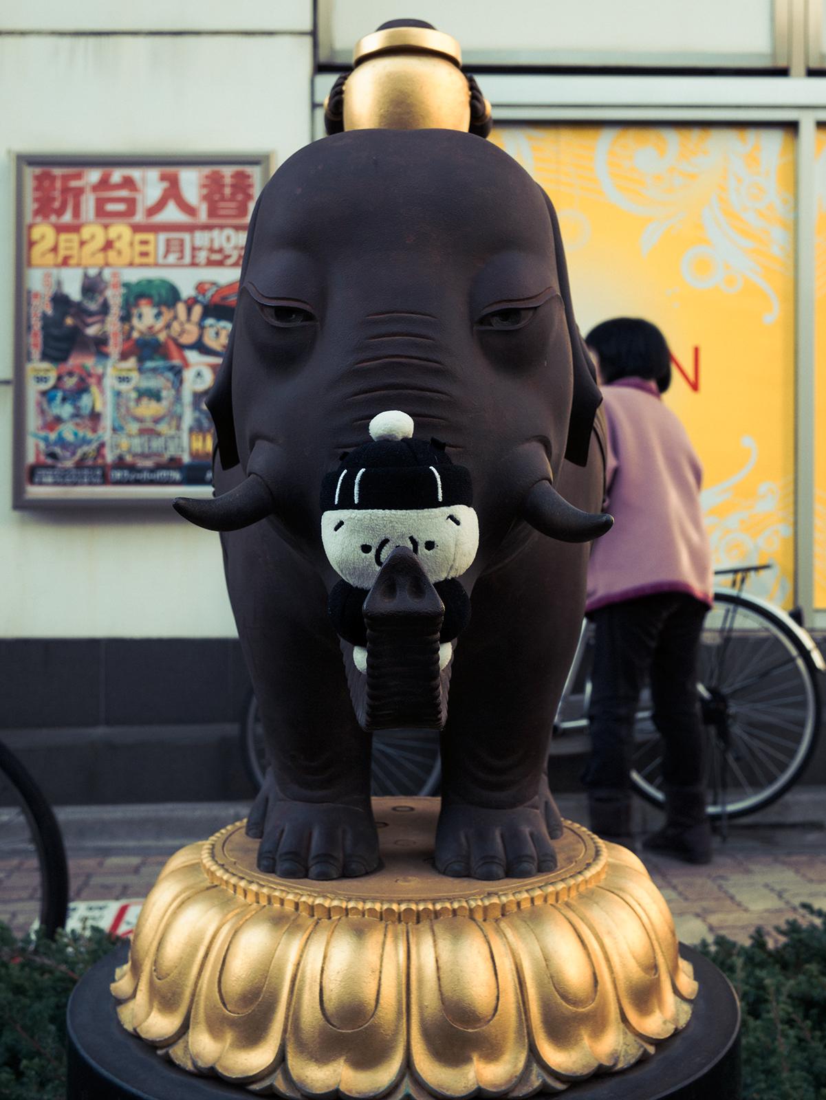 しまむらくんと象