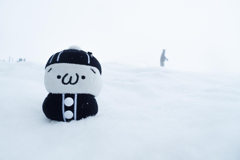 しまむらくんと雪原