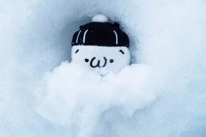 しまむらくんと雪のお布団