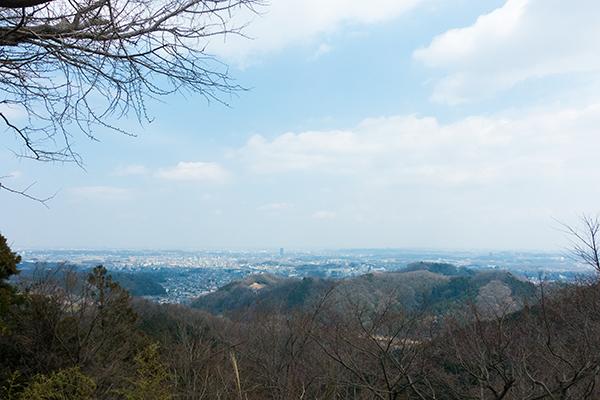 金比羅神社 景色